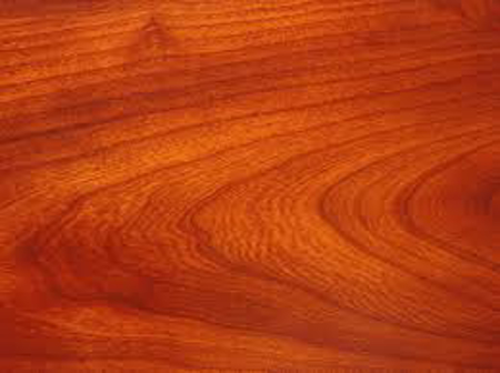 Picture for category Hardwood